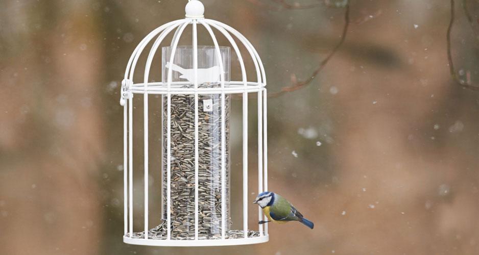 Vintervit fröautomat i romantisk stil från Nelson Garden med design av Alexander Lervik. Efter hand fåglarna äter av maten framträder en dekorativ fågel i metall.