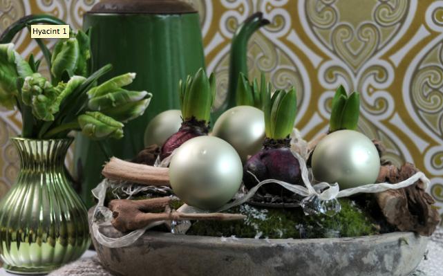 Julhyacinter med julgranskulor. Foto: Blomsterfrämjandet.