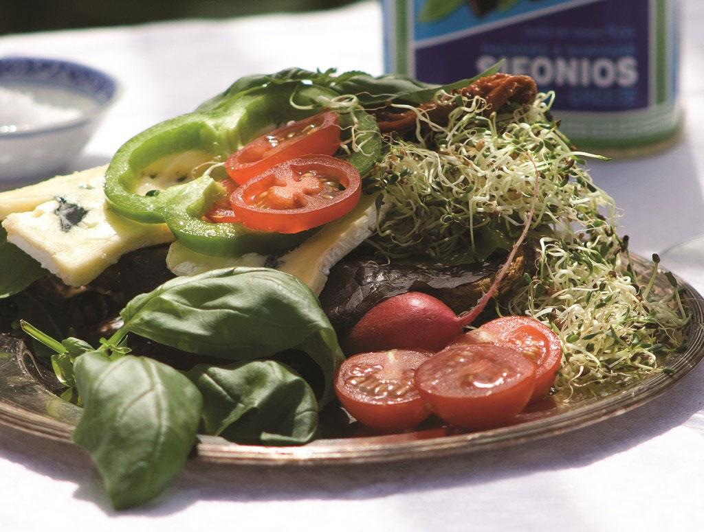 Recept med groddar alfaalfa