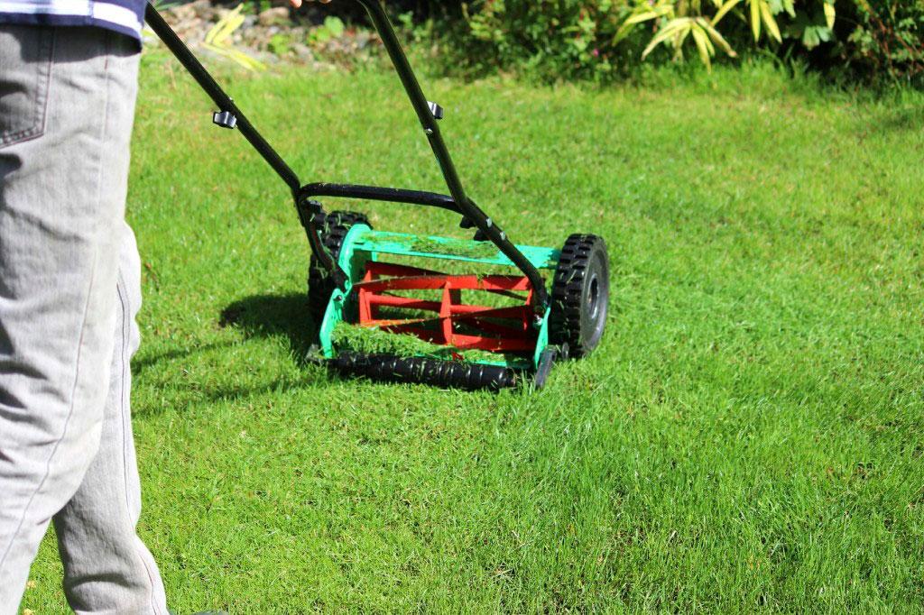 En cylindergräsklippare är bra för både trädgården och kroppen.