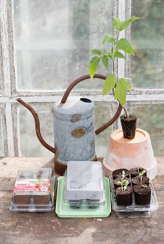Odla inomhus är enklare med Easy to grow.