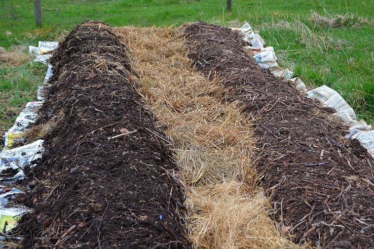 En större odlingsyta är lätt att göra med material som finns till hands och är gratis. Här ligger tidningar mot marken och över det har bäddar av gammalt ensilage, hönsgödsel och halvbrunnen kompost byggts upp.