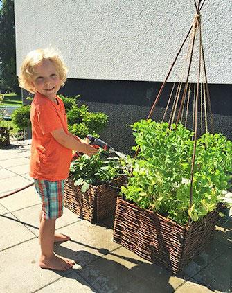 hjälp-barnen-att-odla