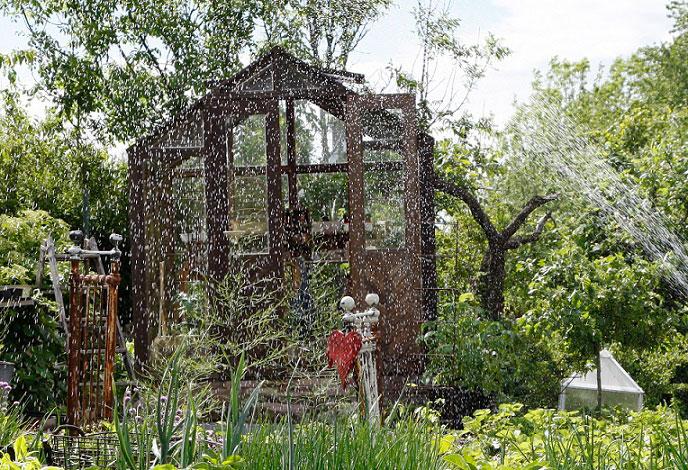 Trädgård augusti lufta växthuset