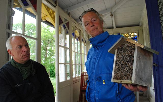 Rädda våra humlor och bin. Vildbin bor en och en.