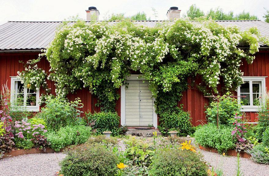 Årets trädgård 2016