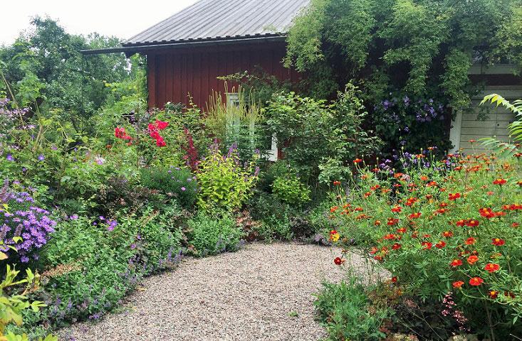 Årets trädgård 2016 - prunkande grusgångar