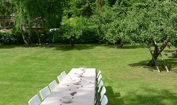 För dig som känner att din gräsmatta har fått utstå alltför omild behandling under sommaren kan det vara en bra idé att så gräs på hösten – i augusti eller september – för att hjälpa gräsmattan att återhämta sig.