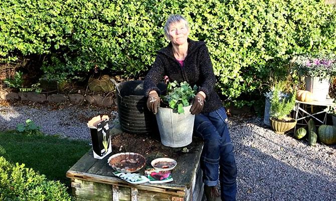 Höstlök och perenner i kruka - Annika Christensen tipsar.