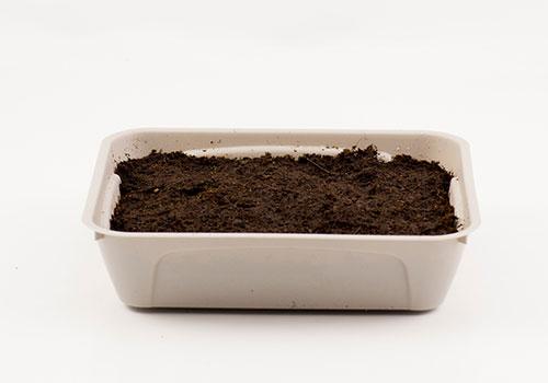 Odla mikroblad