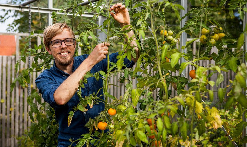 Anders Stålhand i växthus