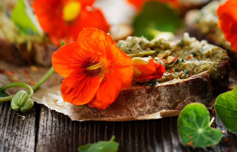 Ätbara blommor av buskkrasse blir fint och gott på en toast med hemlagad pesto.