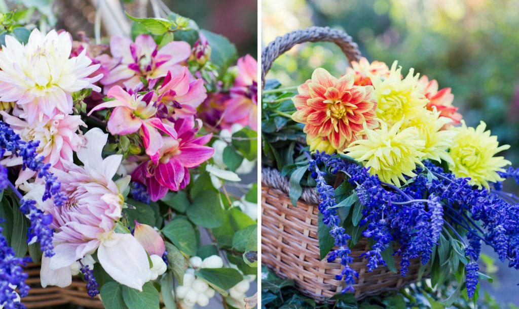 Buketter av dahlia är något alldeles särskilt. Kombinera gärna med andra blommor du har i din trädgård.