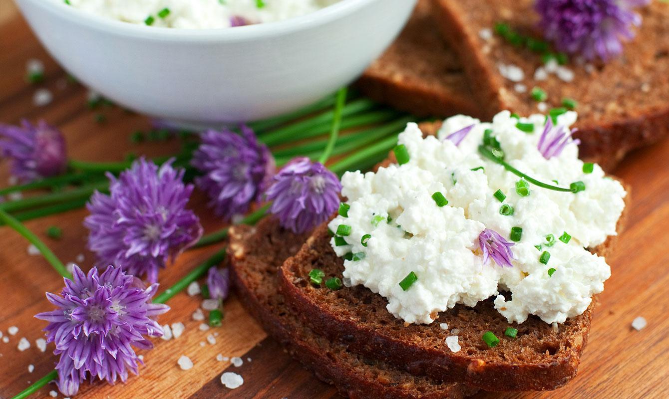 Ätbara blommor - Gräslöksblomma på smörgås