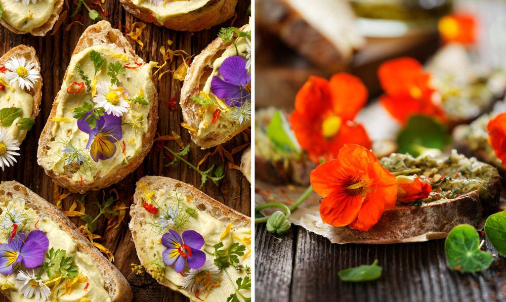 Ätbara blommor - penseer, tusensköna och buskkrasse.