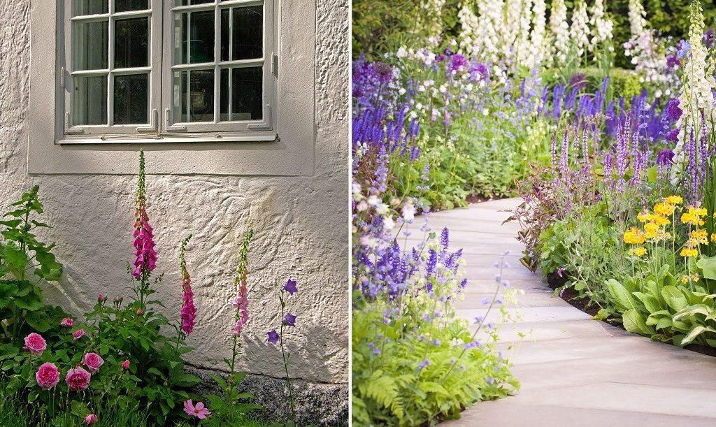 Planera din trädgård – förverkliga dina drömmar - Din odlarvän