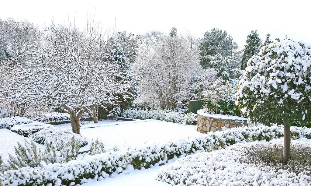 Skapa en trädgård med rum och struktur. Då blir den vacker att se på också på vintern.