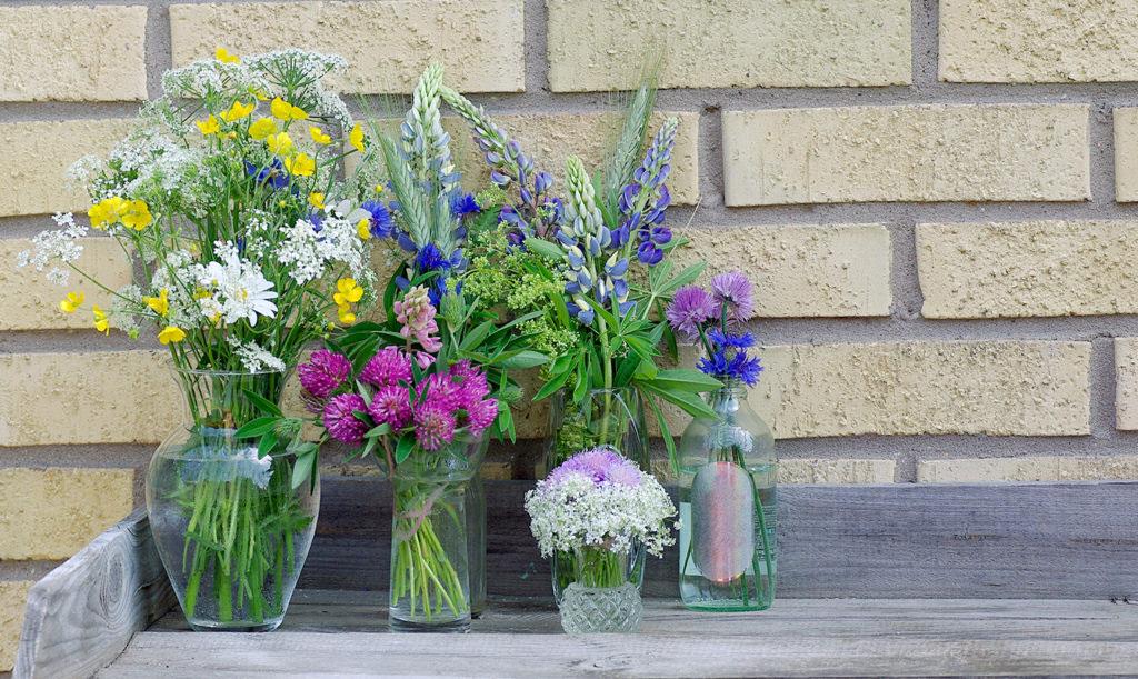 7 sorters blommor till midsommar