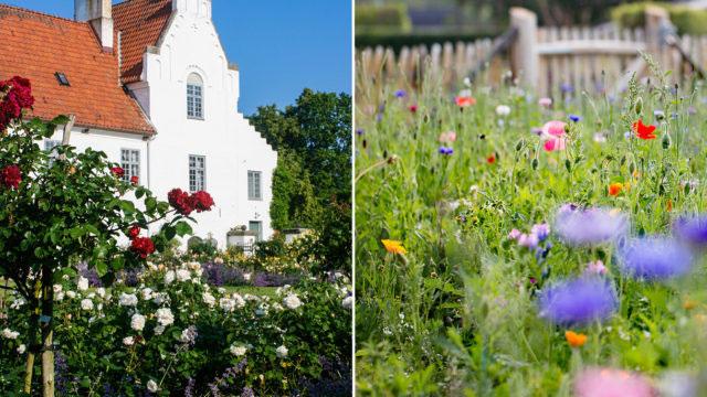 Bosjökloster slottspark och Rosendals trädgårdar.