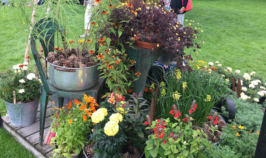 Vackra kombinationer gör en vacker trädgård