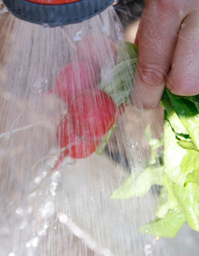 Tvätta dina grönsaker vä