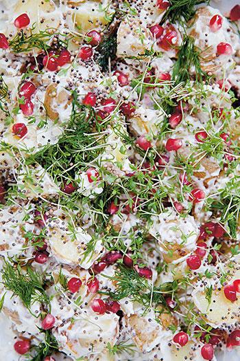 Potatissallad med krasse och granatäpple. Krasse går supersnabbt att odla själv, även på vintern! Foto: Karoline Jönsson