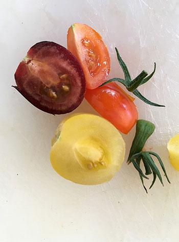 Cita, gula, orange, rosa, röda, rödvioletta, svarta, gröna...tomater kommer sannerligen i alla färger!