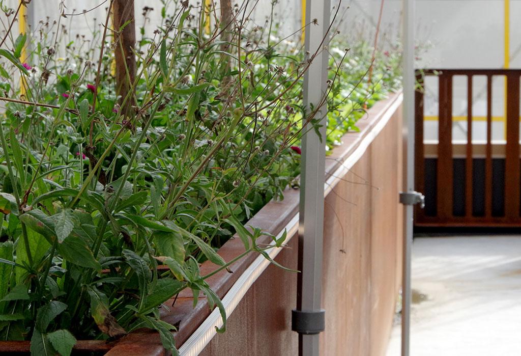 Låt din takodling få sitt eget kretslopp med en egen kompost. Foto: Lovisa Back