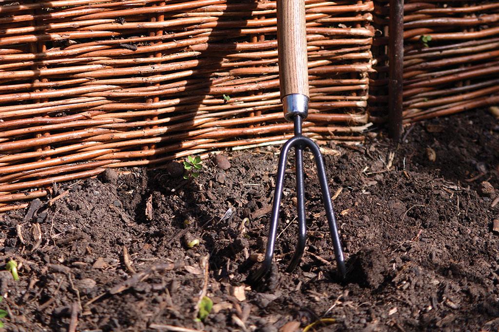 Med en kultivator kan du förbereda jorden. Foto: Markus Danielsson