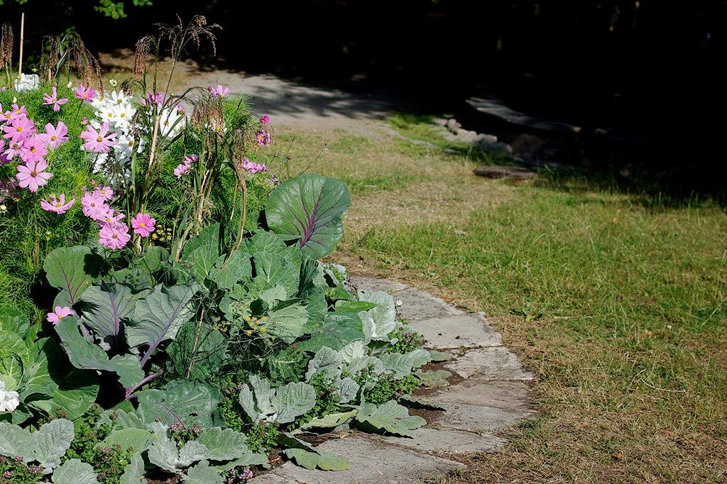 Passa på att bättra på tunna och kala fläckar i gräsmattan.