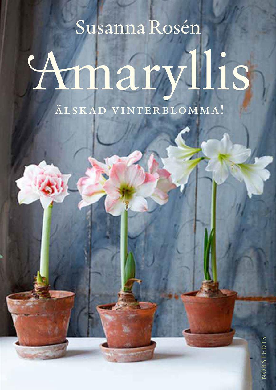 Amaryllis – Älskade vinterblomma Av Susanna Rosén