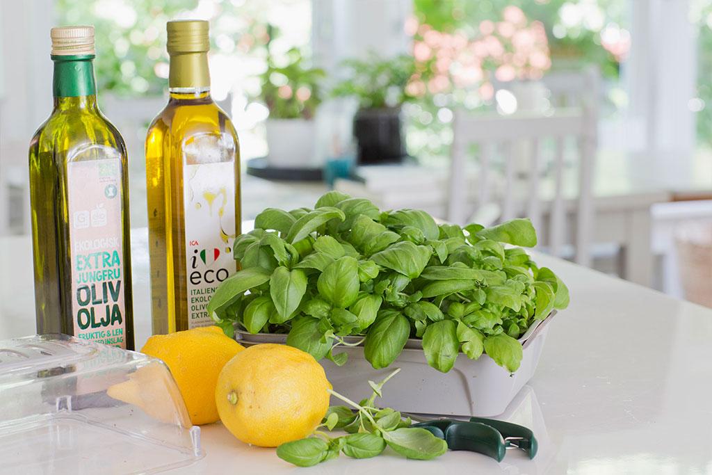 Du kan odla basilika inomhus året om! Använd småkrukor och fröer du har hemma eller kika på Kökets kryddor, ett färdigt paket med odlingstråg och fröer. Foto: Annika Christensen