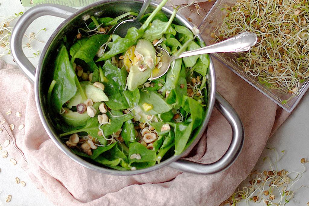 Låt linsgroddarna göra din sallad lite matigare! Foto: Lovisa Back