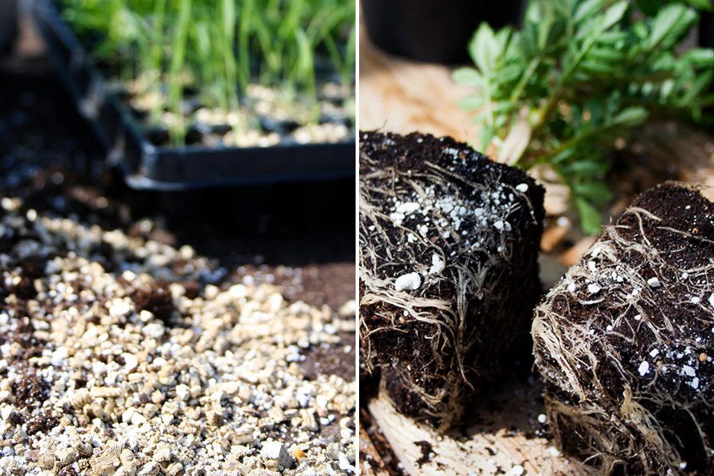 Vermiculite eller Perlite Nelson Garden