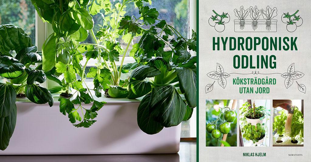 Niklas nya bok hjälper både dig som är helt ny på hydroponisk odling, liksom dig som vill veta ännu lite mer. Foto tv: Peter Carlsson Th: Hydroponisk odling av Niklas Hjelm
