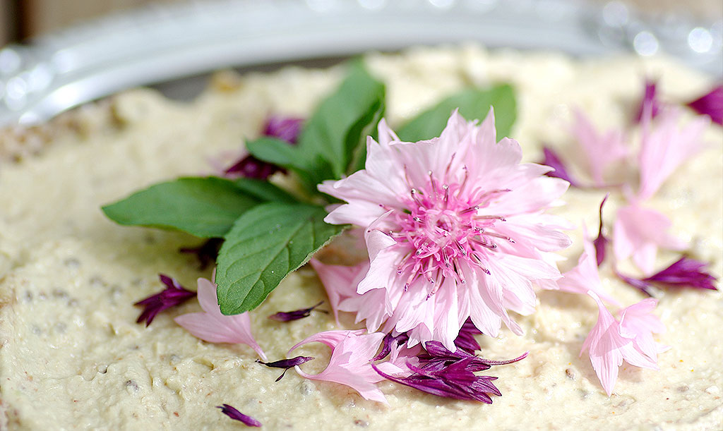 Blåklint går att äta och är en fin blomma att dekorera sina efterrätter med. Foto: Lovisa Back