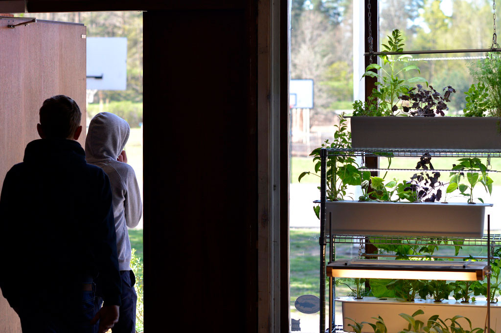 I skolans entre står 6 stycke hydroponiska odlingslådor. Foto: Markus Danielsson