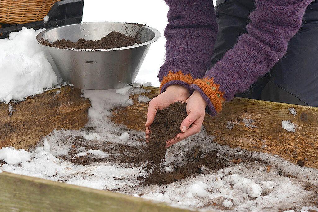 Täck med tinad jord och platta till.