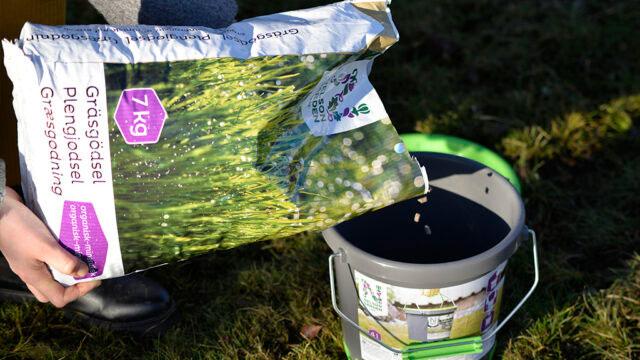 Använd en strömming för att sprida gädslet jämt över gräsmattan.