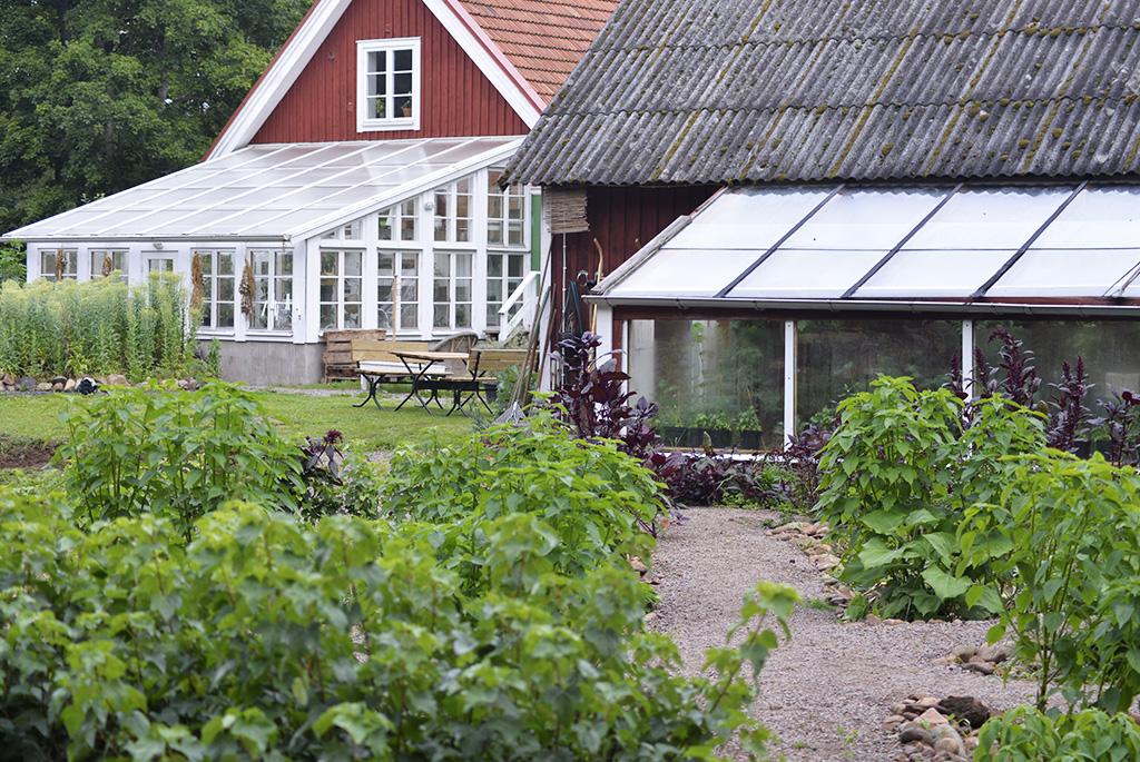 På gården finns två växthus, varav det ena – vid bostadshuset – värms upp av spillvärme, vilket möjliggör odling året runt.